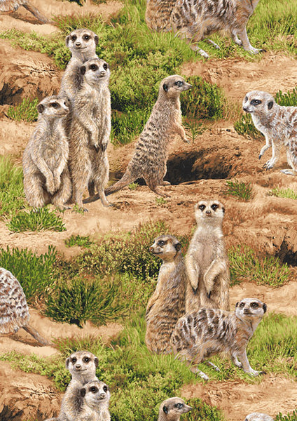 Born Free Meerkat Cotton Fabric Wildlife  BY the Yard