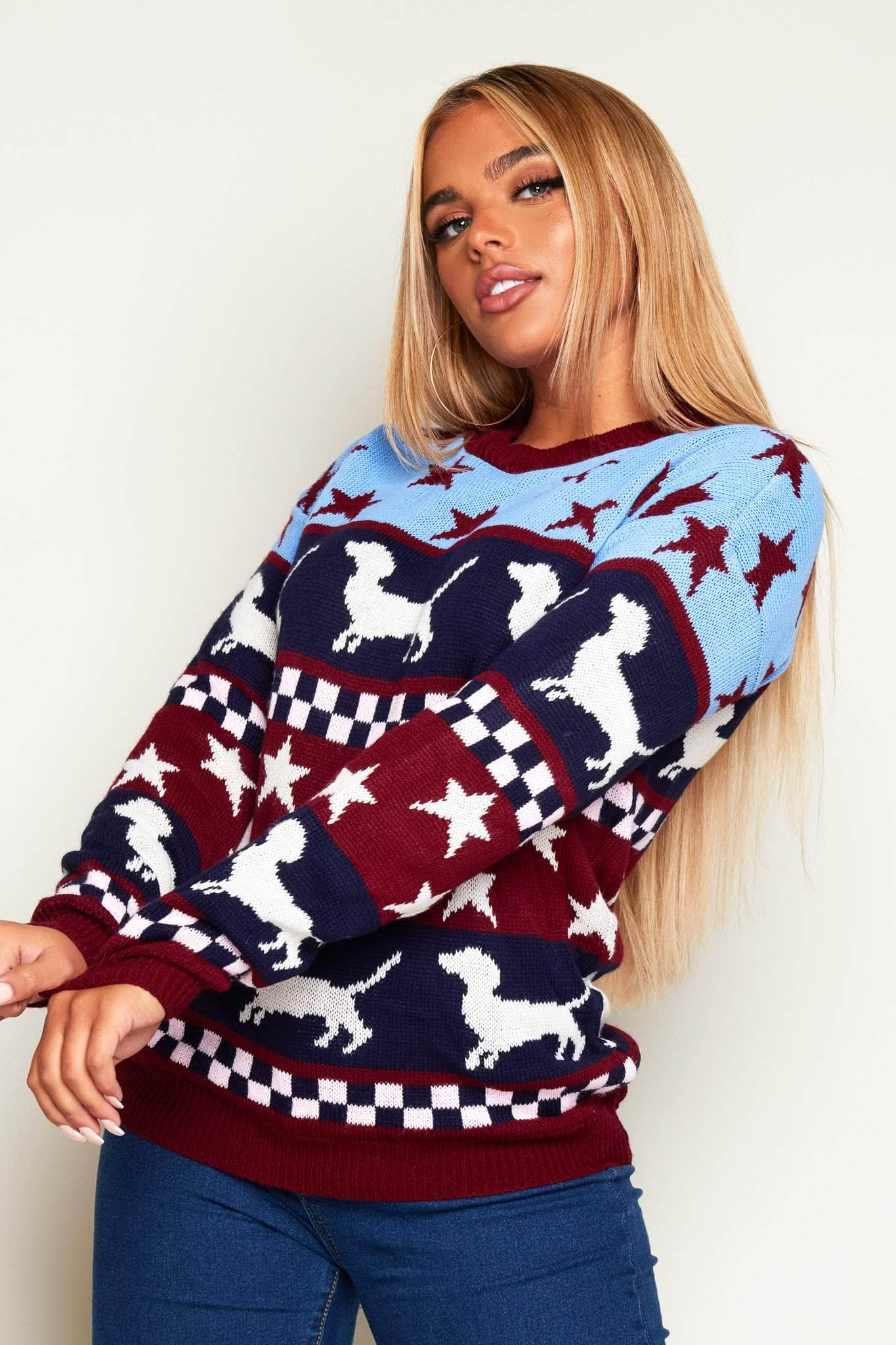 Sausage Dog Printed Contrast Chunky Knitwear