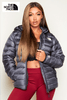The North Face Unisex Ash Responsible Down Jacket