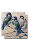 Singing Blue Birds Stone Coasters