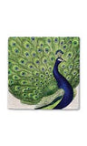 Regal Peacock Stone Magnet