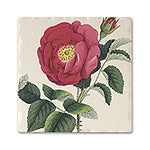Romantic Rose Absorbent Ceramic Coaster