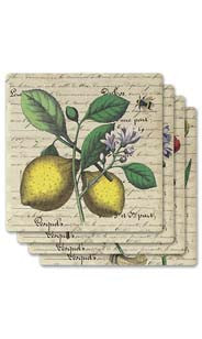 Fruit & Bird Botanicals Absorbent Ceramic Coaster Set