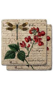Dragonfly & Floral  Stone Coaster Set
