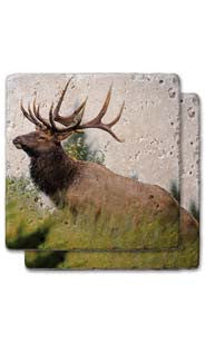 Elder Elk Stone Coaster Set