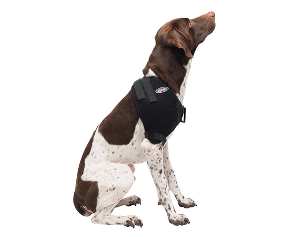 Medium Shoulder Pet Therapy Wrap