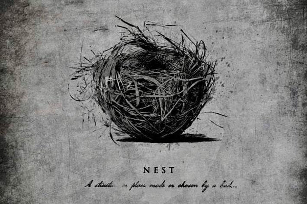 Project Nest