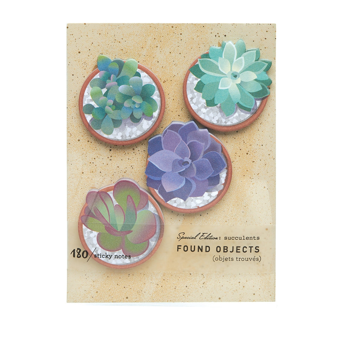 SUCCULENTS FOUND OBJECTS PAGE FLAGS