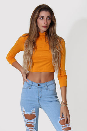 BRI CROP TOP