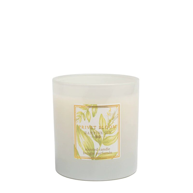 Hampton Sun Privet Bloom Scented Candle