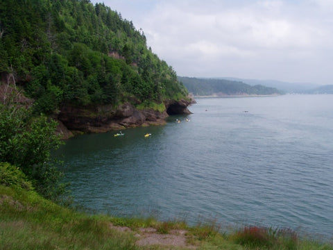 Canadian Hikes bay of fundy