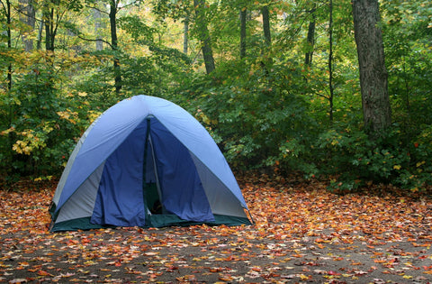 camp comfortably in the fall tent with leaves