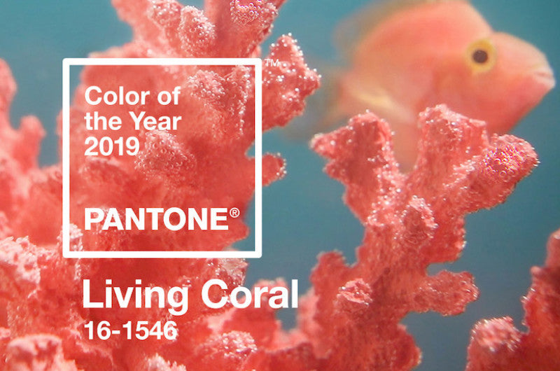 The 2019 Color of the Year ~ Living Coral!