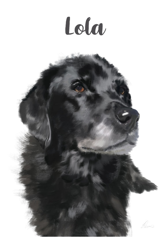 Customised Pet Portrait