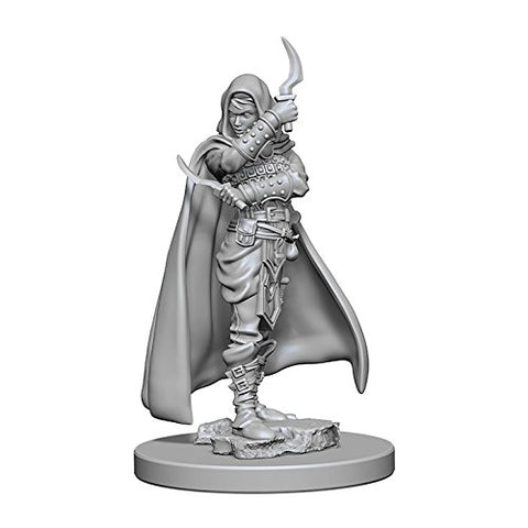 WizKids Pathfinder: Deep Cuts Unpainted Miniatures: Human Female Rogue
