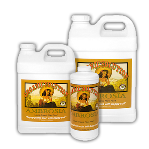 Organic Solution - Ambrosia 1 Gallon