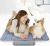 Image of Foldable Pet Mat for Travel