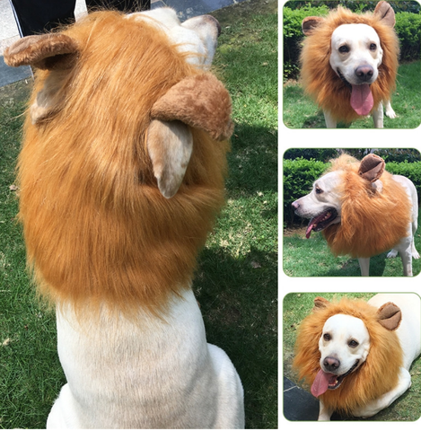 Lion Hair Mane Costume for Dogs