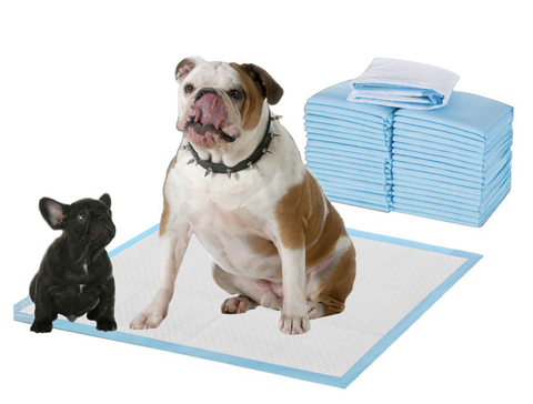 Super Absorbent & Leak-Free Extra Large Pet Training and Puppy Pads