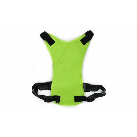 Adjustable Safety Seat Belt Harness Pet Vest