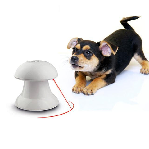 360 Degree Automatic Interactive Dart Laser Light Exercise Teaser for Cat and Small Dogs