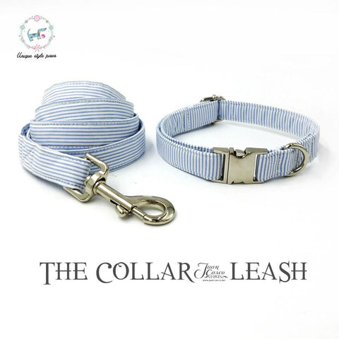 Blue Striped Collar Set with Leash