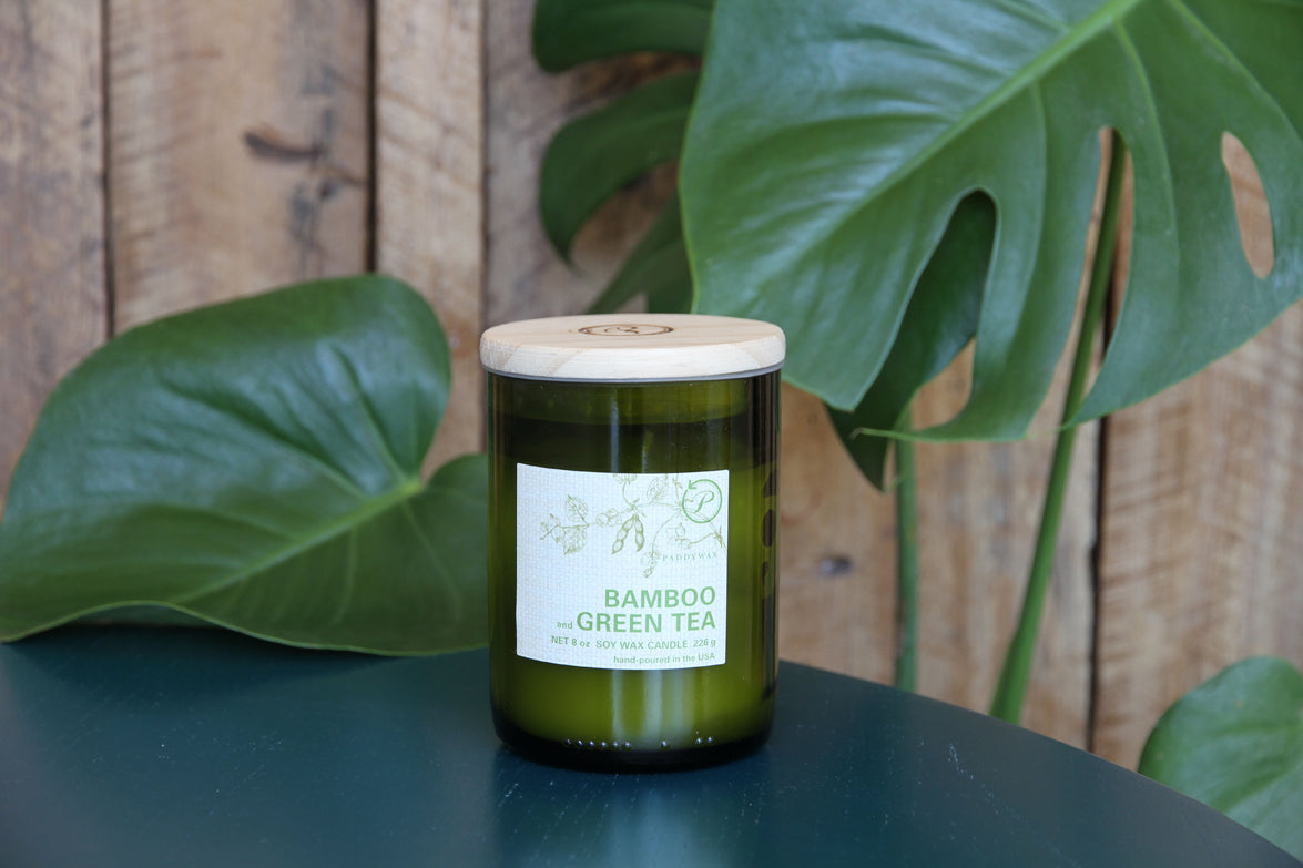 Bamboo Green Tea Paddywax Candle