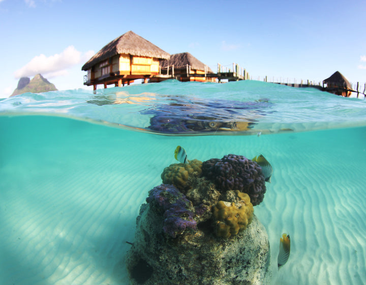 THE BORA BORA PEARL. BEAUTIFUL.