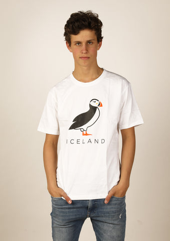 Men's Iceland Standing Puffin