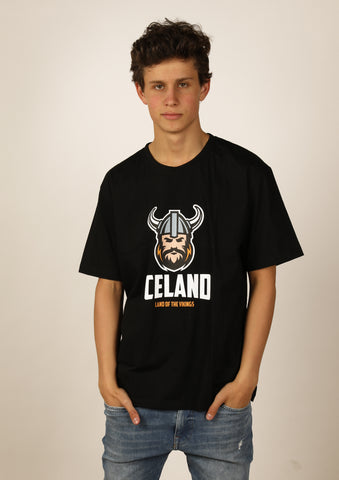 Men's Iceland T-shirt Viking Men