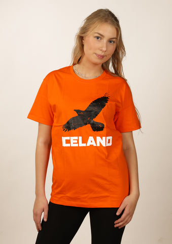 Icelandic sweaters and products - Women's Iceland Raven Tshirts - Shopicelandic.com