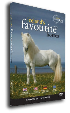 Iceland's Favourite Horses (DVD) - DVD - Shop Icelandic Products