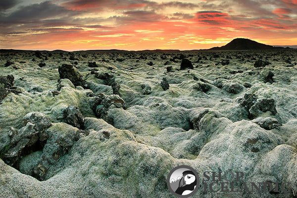 Lava Fields 3 - Fine Print - Shop Icelandic Products
