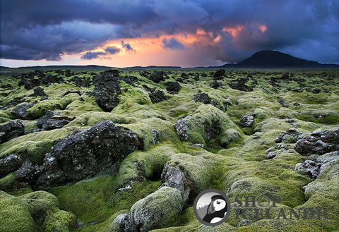 Lava Fields - Fine Print - Shop Icelandic Products