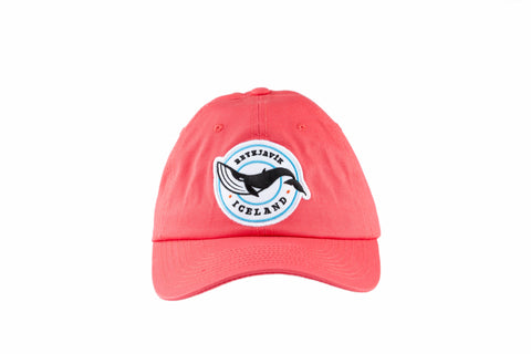 Icelandic sweaters and products - Baseball cap - Whale Hat - Shopicelandic.com