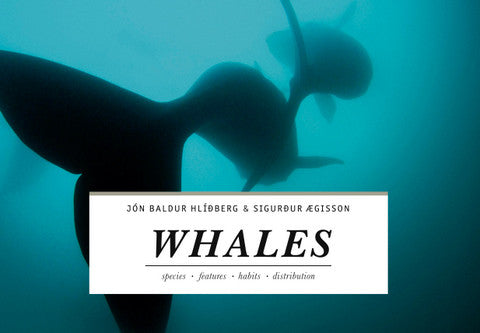 Icelandic sweaters and products - Whales - Hvalir Book - Shopicelandic.com