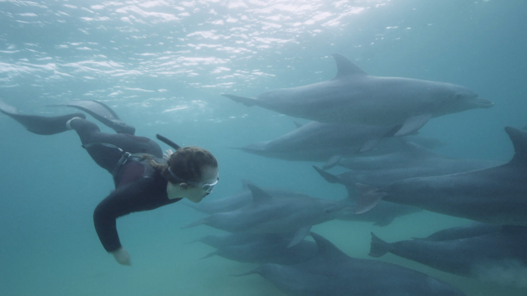 Ellie Simmonds freediving with Dolphins in Mozambique