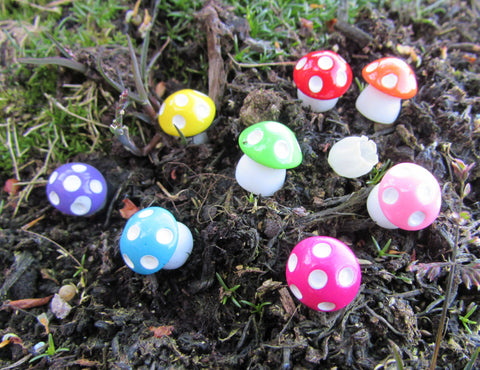 Pack of 8 Mushrooms for Fairy Gardens