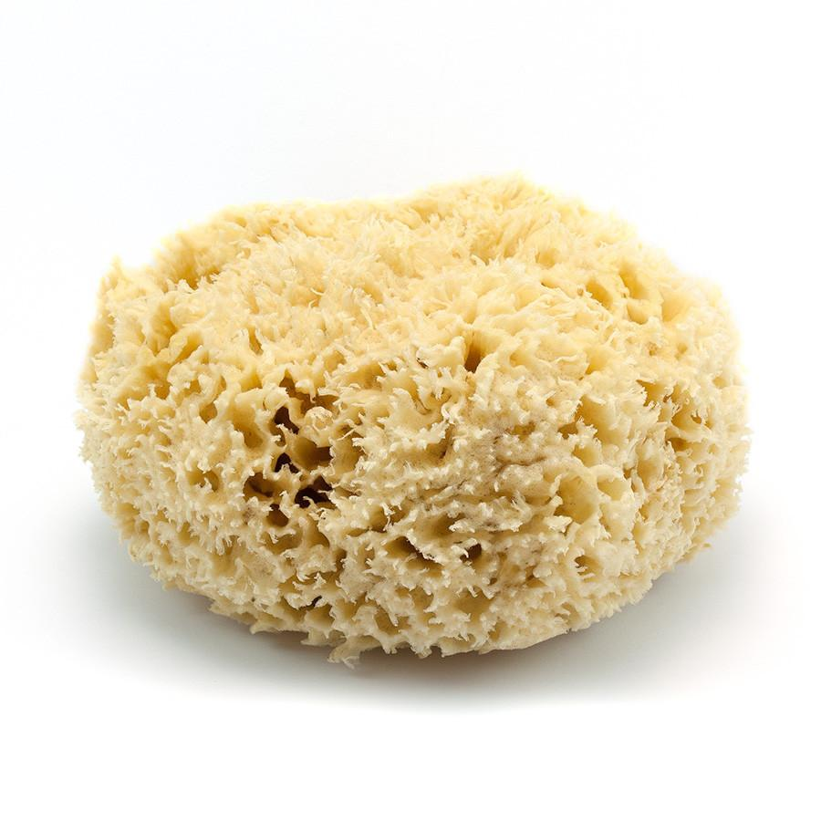 "Rock Island Natural Sea Wool Sponge, 7"" Large Sea Sponge Fendrihan"