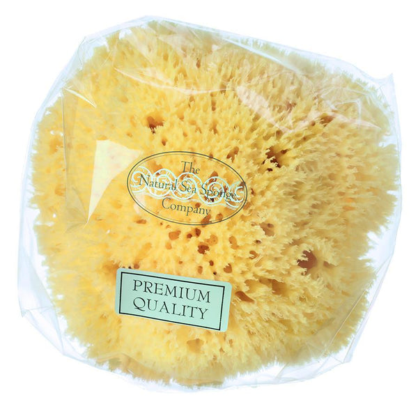 "The Natural Sea Sponge Company East Mediterranean Honeycomb Sea Sponge, 5"" - Fendrihan - 2"