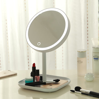 Two Panel LED Lighted Makeup Mirror