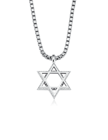 Mens Star of David Necklace Finished in Pure Platinum
