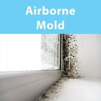 Air Purifiers for Airborne Mold