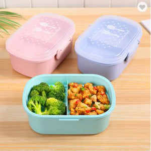 Eco Wheat Straw Food Container with Compartment - abrandz