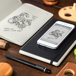 MOLESKINE Smart Writing Set - abrandz