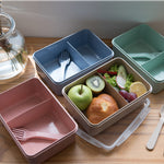 Eco Friendly Lunch Box with Divider