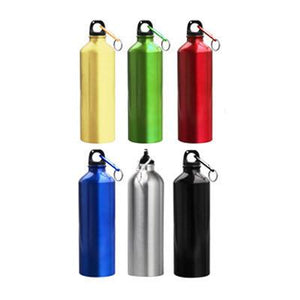Aluminium Bottle with Carabiner (Metallic) - abrandz