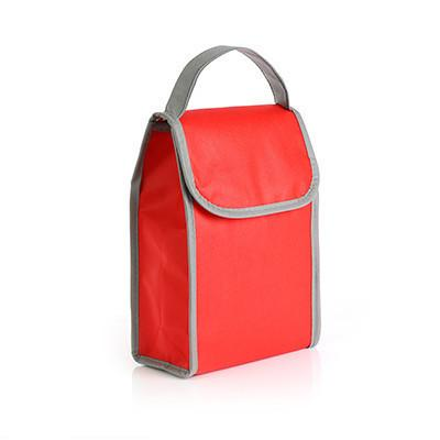 Foldable Non Woven Cooler Bag for 6 cans of drink