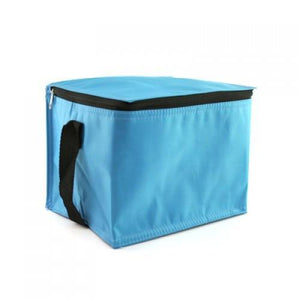 Insulated Cooler Bag | Cooler Bag | AbrandZ: Corporate Gifts Singapore