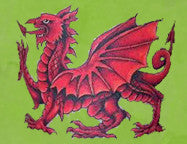 Happy St David's Day to all of our Friends in Wales.